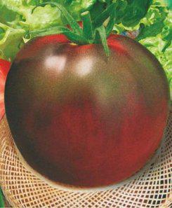 Семена томатов Черный принц