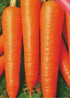 Семена моркови Вита Лонга 25 г
