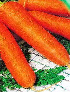 Семена моркови Красный гигант (имп.)
