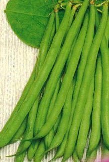 Семена фасоли спаржевой Приусадебная