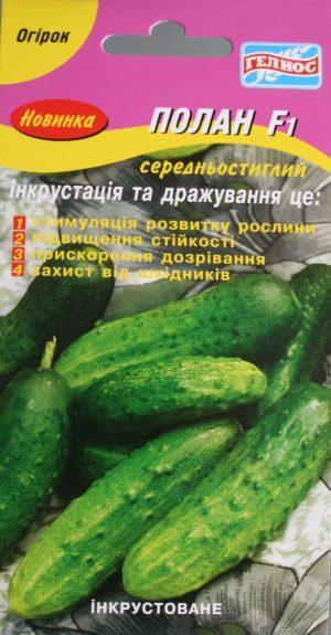 Семена огурцов пчелоопыляемых Полан F1 25 шт. Инк.