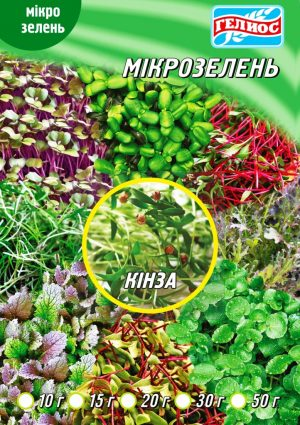 Семена Кинзы для микрозелени 20 г