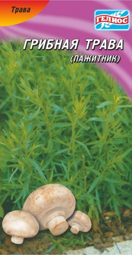 Семена грибной травы Пажитник 0,5 г