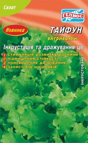 Семена салата Тайфун 1000 шт. Инк.