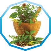 Семена перца Александр (Moravoseed)