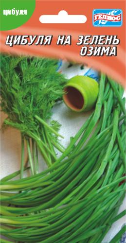Семена лука на зелень Озимая 100 шт.