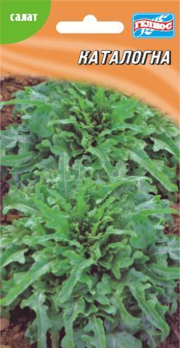 Семена салата Каталогна бутербродный 1 г