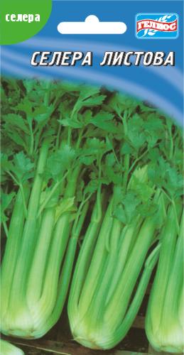 Семена сельдерея  листового 300 шт.