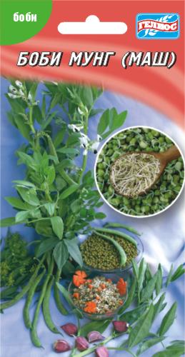 Семена бобов Мунг (Маш) 100 шт.