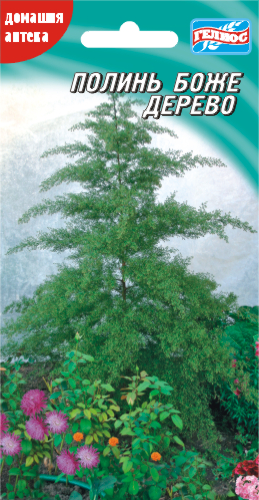Семена Полыни Божье дерево 0,1 г