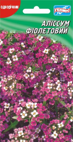 Алиссум Фиолетовая королева 300 шт.