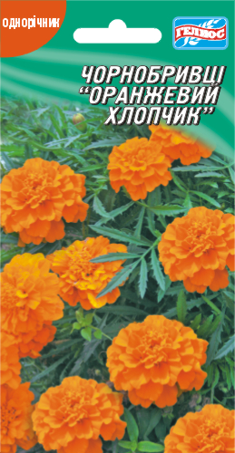 Бархатцы Оранжевый мальчик 50 шт.
