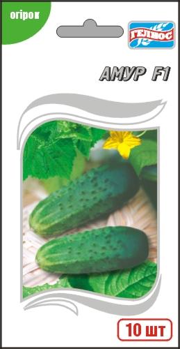 Семена огурца Амур F1 Голландия (Bejo) 10 шт, тепличный огурец самоопыляемый