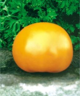 Семена томатов Ананасный