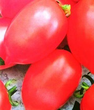 Семена томатов Гибрид - 2 Тарасенко розовый