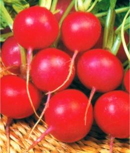 Семена редиса Сора (имп)