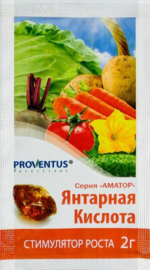 Янтарная кислота 2 г Провентус