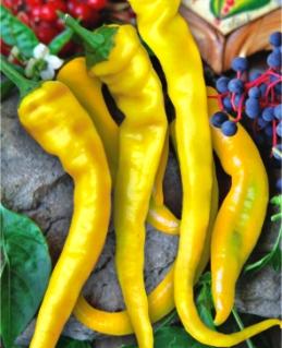 Семена перца Бараний рог желтый
